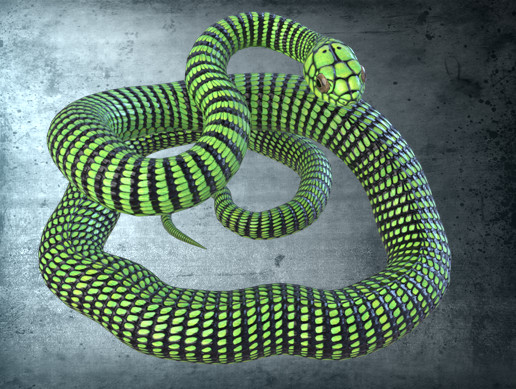 Animated Boomslang Snake PBR