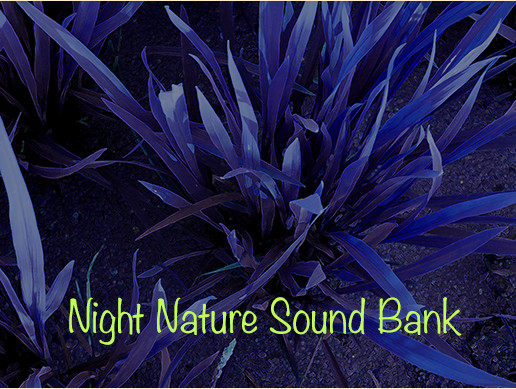 Night nature Sound Bank