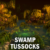 Swamp tussocks