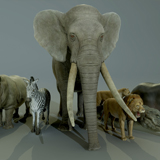 AFRICAN ANIMALS PACK
