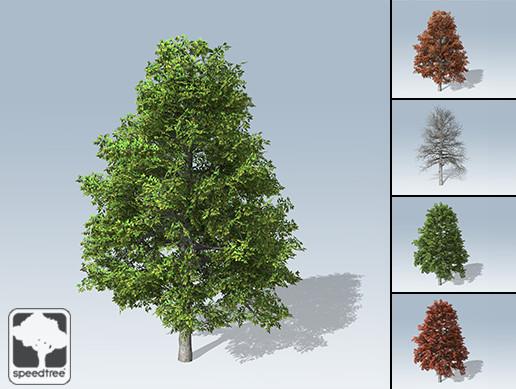 Unity 3D - Desktop Trees Package by SpeedTree®