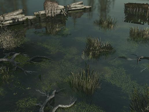 Nature Assets - Swamp Vegetation