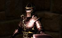 Ornamental Knight