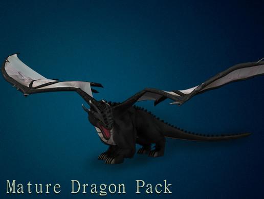 3D Mature Dragon Pack