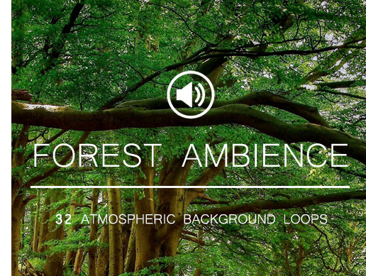 Ambient Background Sounds