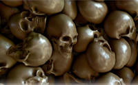 Skulls Texture