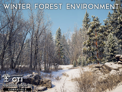 Winter Forest Environment