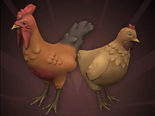 Chickens | Farm Animals