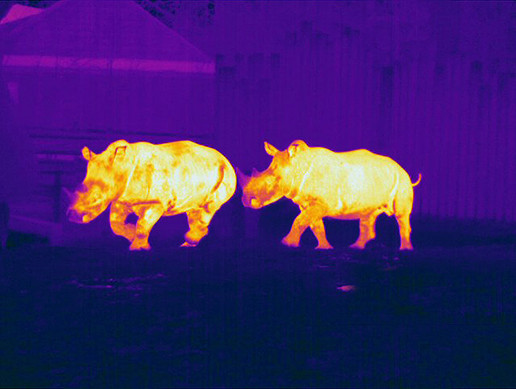 Thermal Night Vision Negative Film ImageEffect