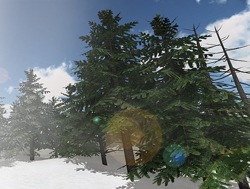 Detailed Pine Trees