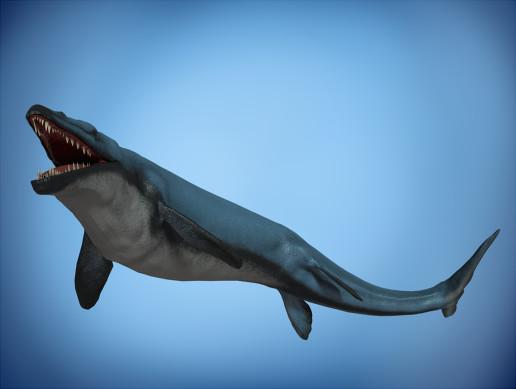 Basilosaurus Asset Pack
