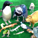 Complete J. Suko Animals pack