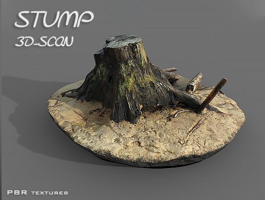 Stump 3D-SCAN