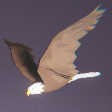 Low Poly Bird: Bald Eagle