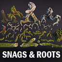 Snags and roots
