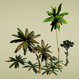Animated Tropical Vegetation