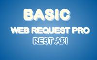 Basic Web Request Pro