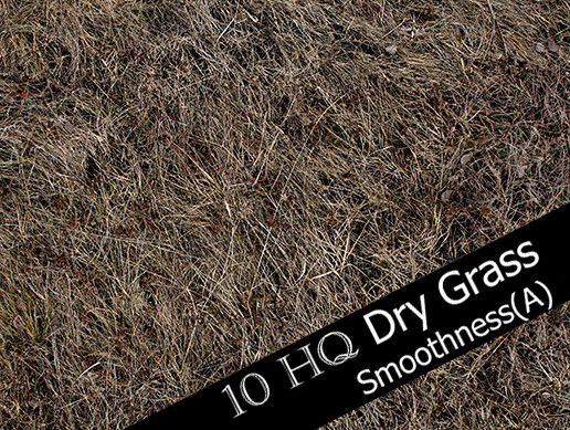Dry Grass and Mud Photo-Texture