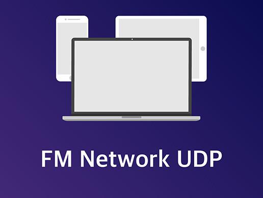 FM Network UDP - Asset Store