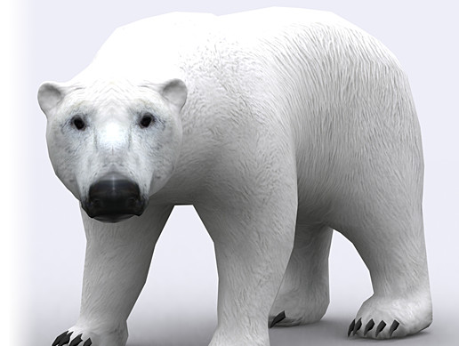 3DRT-animals wild Polar Bear