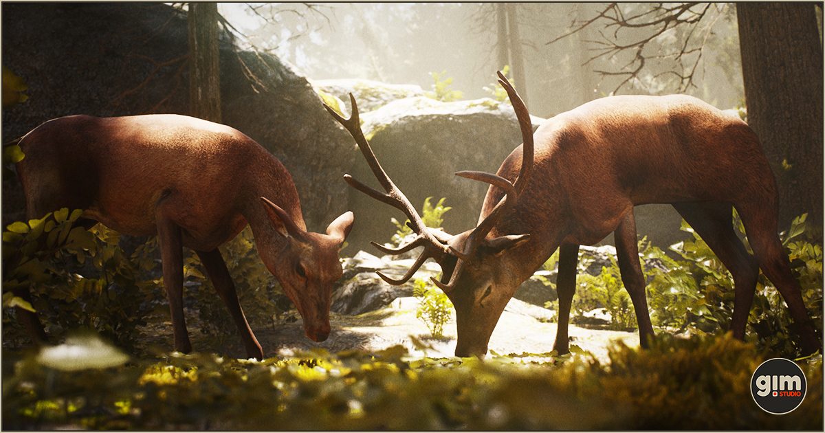 Animalia - Red Deer (pack)