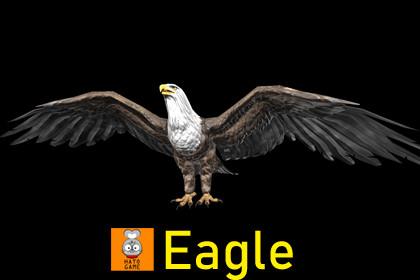 Animal Monster - Eagle