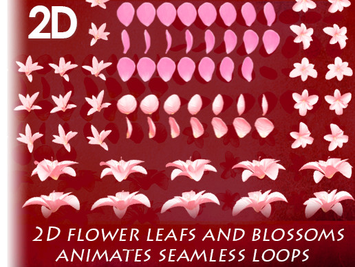 2D Flowers and Flower Petals