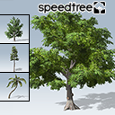 Free SpeedTrees Package
