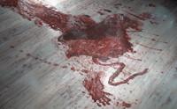 Blood: Trails
