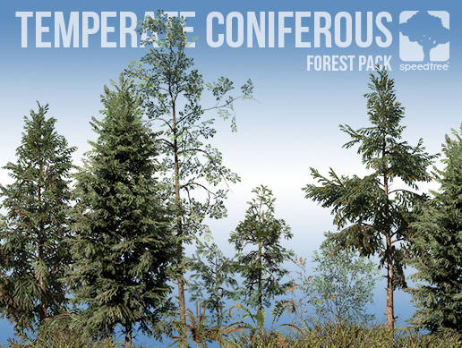 Temperate Coniferous Forest Pack (v8)
