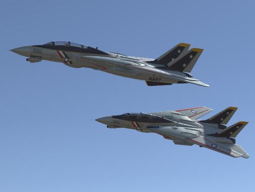 Jet Fighter Aircraft F-14 Tomcat
