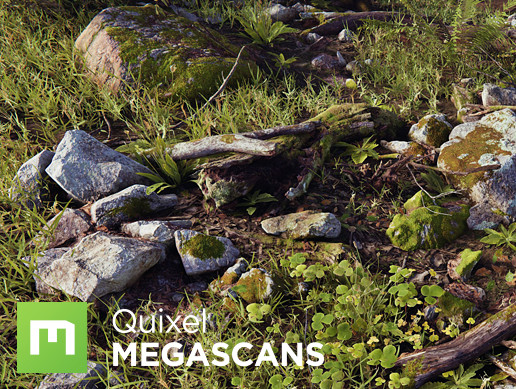 Megascans Valley Collection HD