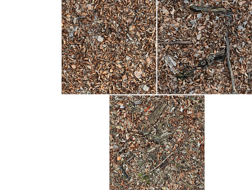 Dead Leaves Materials - Photoscanned