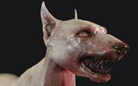 Combat Dog