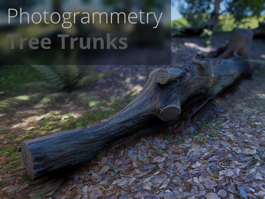 3D-Scanned, Photo-Grammetry Tree Trunks