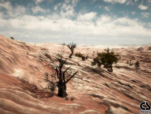 Abandoned Mine Terrain