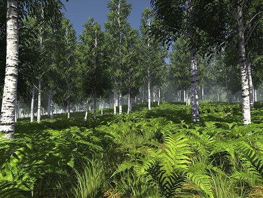 Birch Trees Environment Pack