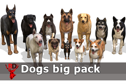 Dogs big pack