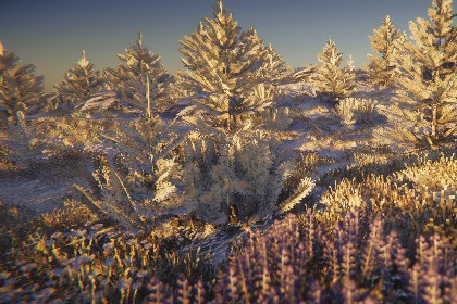 Stylized Winter Pine Forest Environment