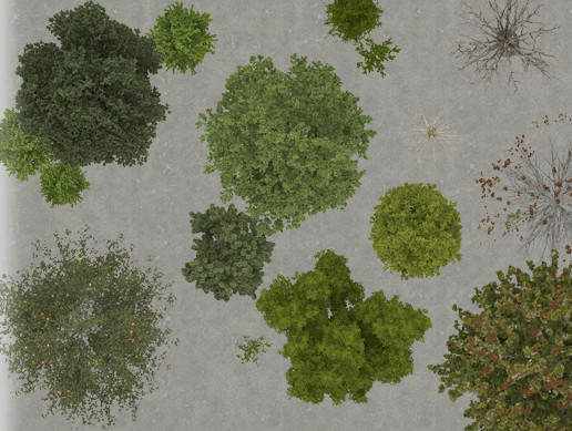 2d trees top view 2d environments unity asset store 2d trees top view