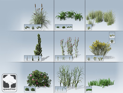 Desktop Ground Cover Package - Asset Store