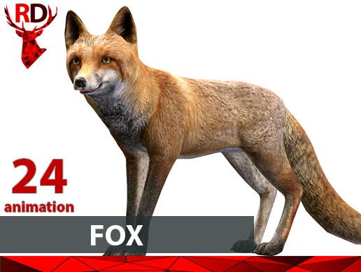 Fox male(short)
