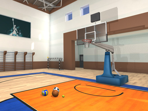 Universal sport hall - basketball, football, volleyball, tennis