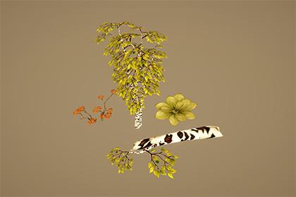 Stylized Vegetation
