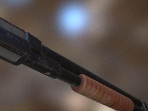 [Affordable Assets] Pump Action Shotgun