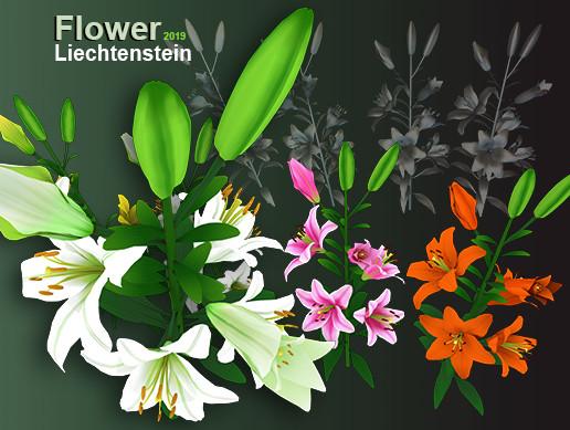 Flower Liechtenstein
