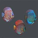 Underwater life deluxe