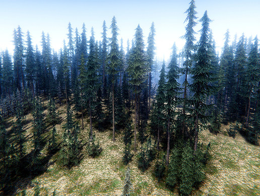 Pine Trees Pack