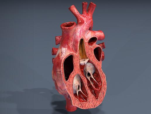Open Heart Texture HD