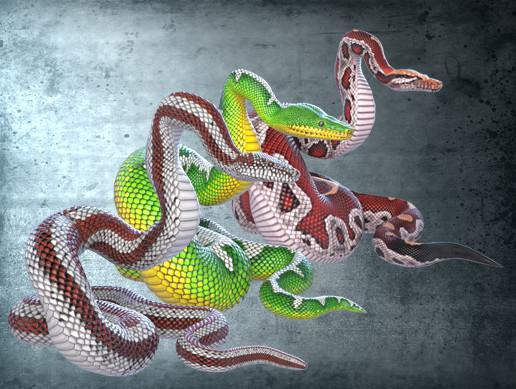 Animated Pythons PBR Volume 2